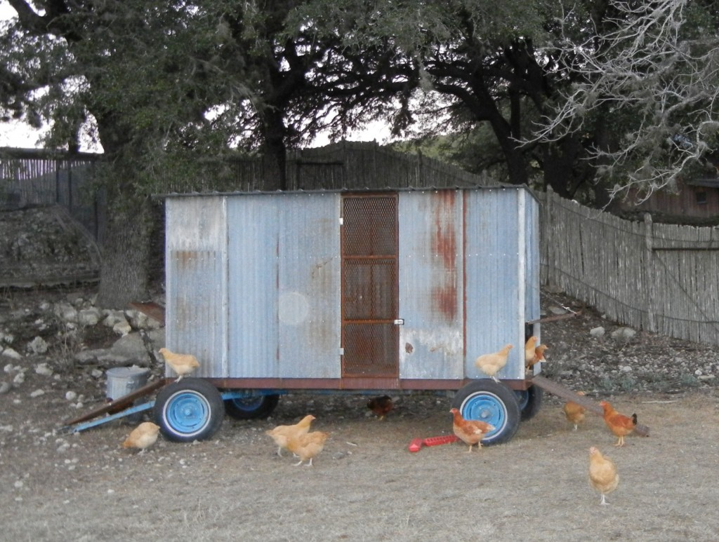 The Chicken Trailer
