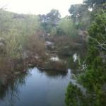 Spring morning, Wallace Creek