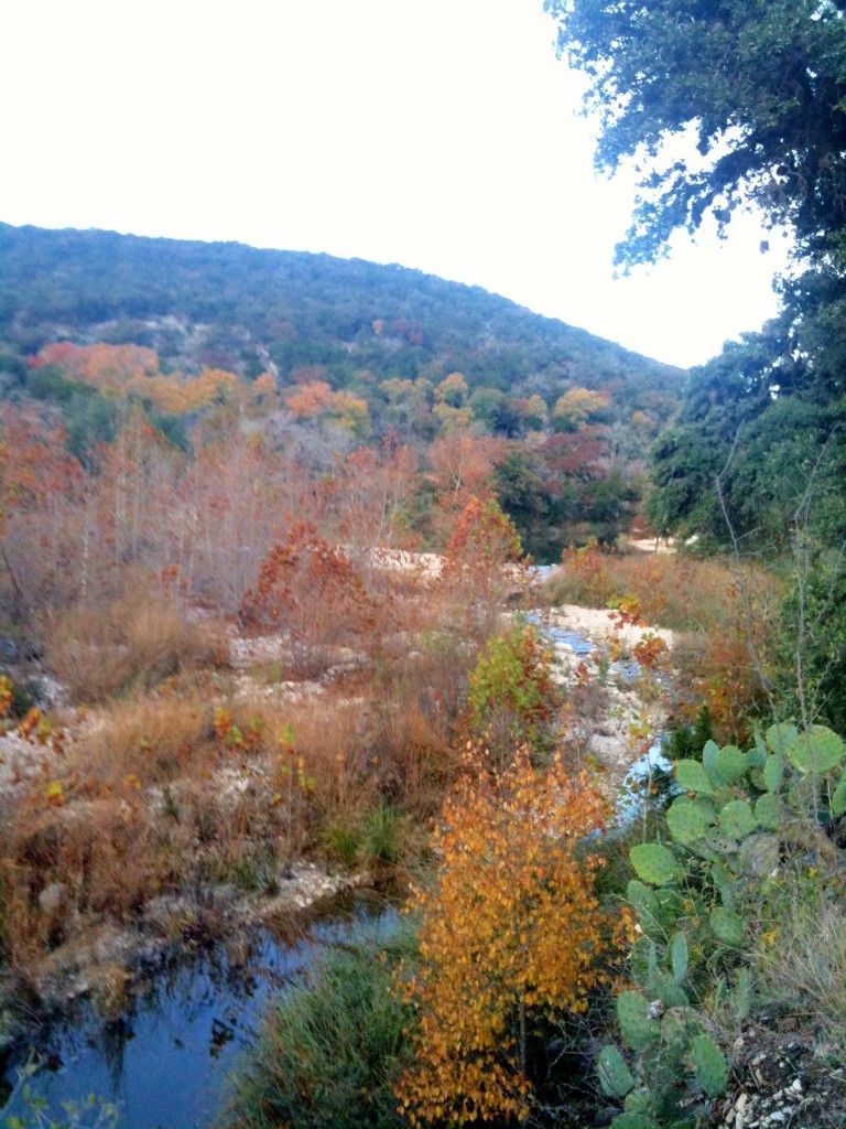 Wallace Creek in the fall