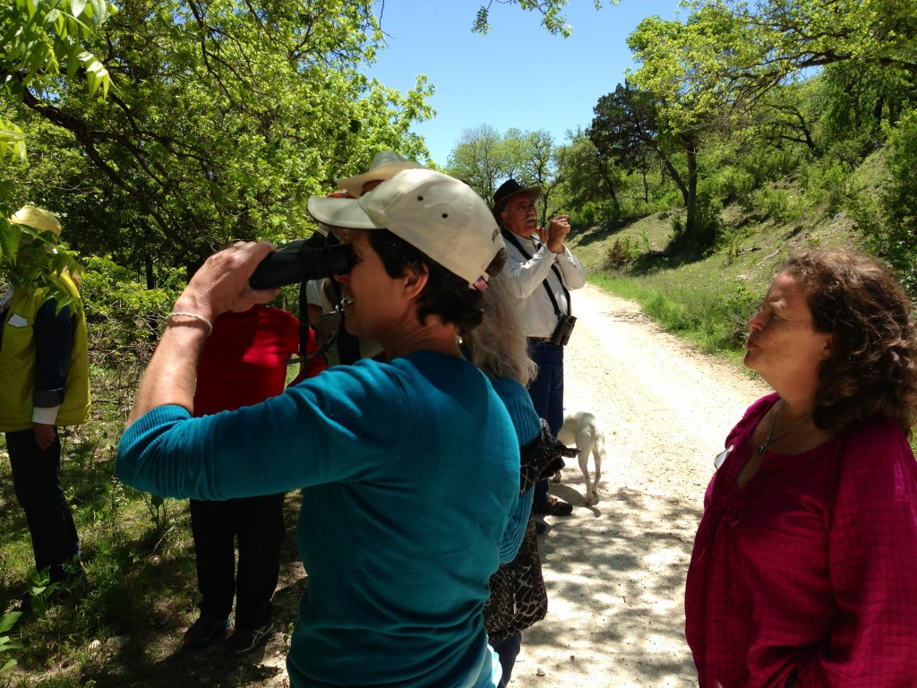 Birdwatching with the Bandera Canyonlands Alliance