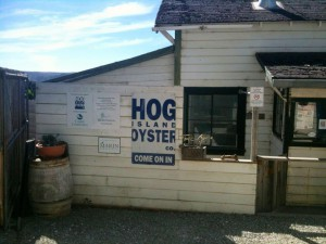Hog Island Oyster Co., Marshall