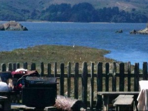 Tomales Bay from Hog Island Oyster Co.