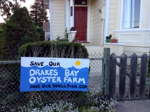 Save Our Drakes Boy Oyster Farm sign